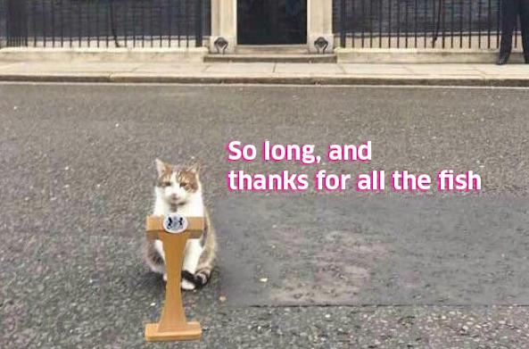 Larry the Cat is er al lang klaar mee
