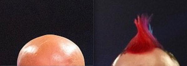 Mooi portret van twee mannen die ieder een andere afslag namen...