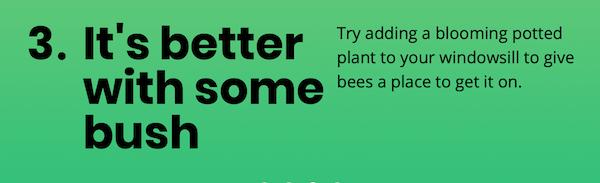 Voor de bijen dan he