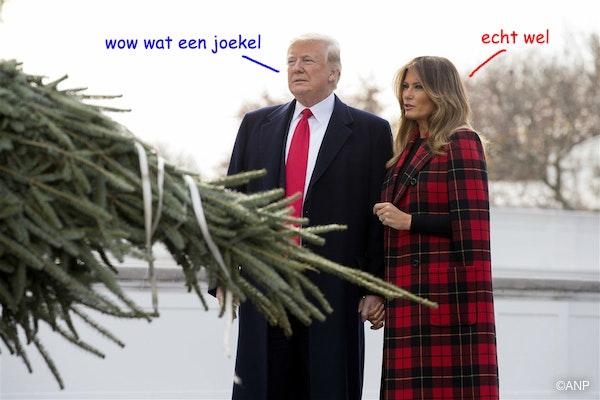 opa en oma krijgen een kerstboom